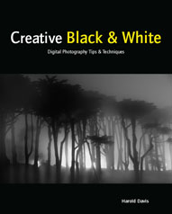 Creative Black & White: Digital Tips & Techniques