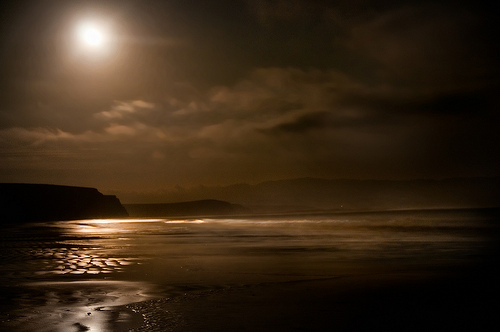 Drakes Bay by Moonlight by Harold Davis