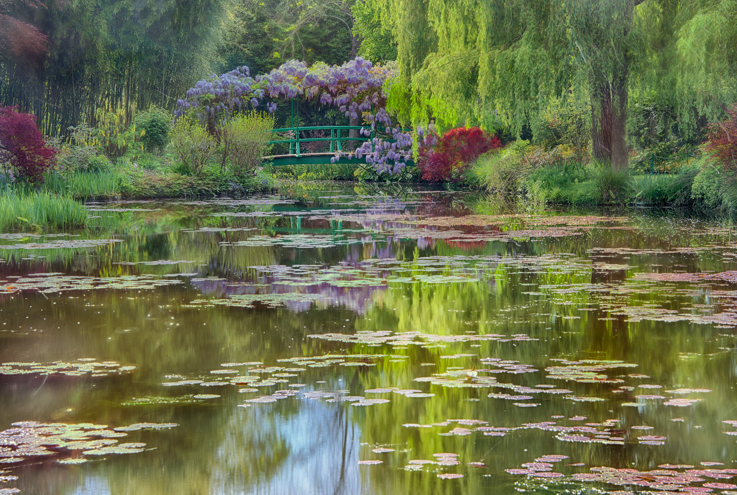 Monet's Lily Pond at Giverny