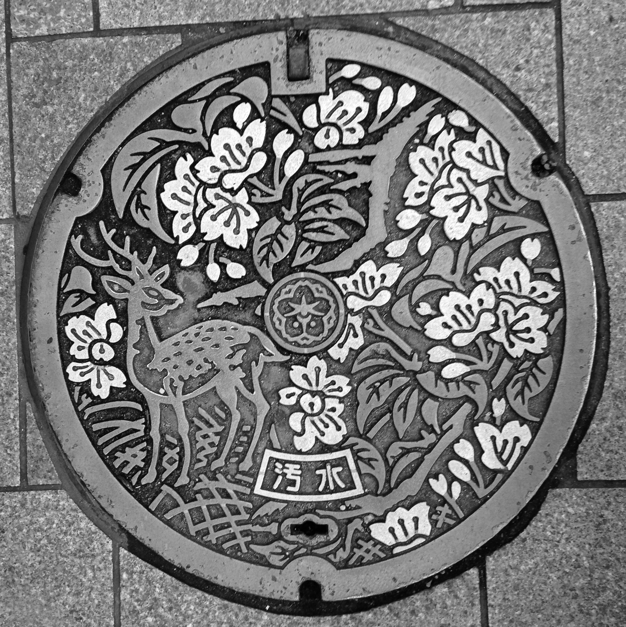 Manhole Cover, Nara, Japan © Harold Davis