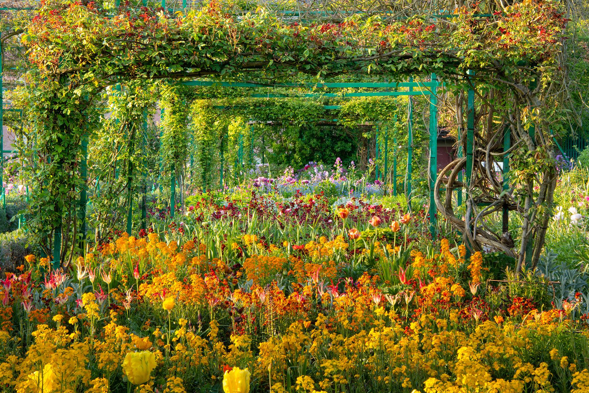Flowers at Giverny © Harold Davis