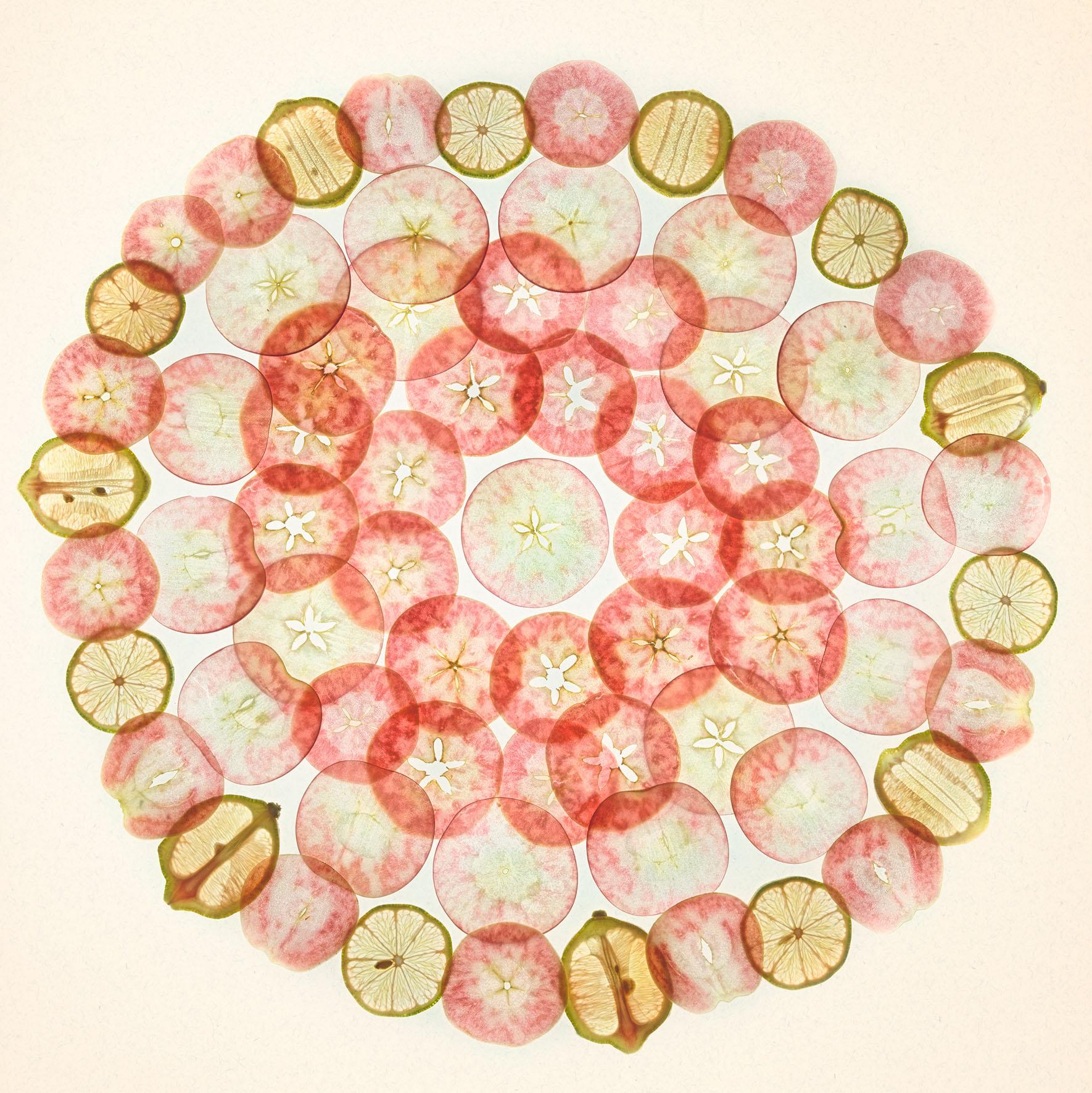 Lady Pink Apple Slices with Lemons © Harold Davis